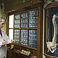 Dr Davis studies MRI films