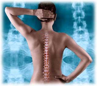 Posture chiropractor in san francisco